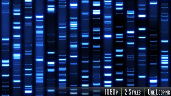 Thumbnail for DNA Fingerprint Sequence