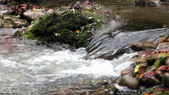 Thumbnail for Fresh Creek Cascade in Autumn