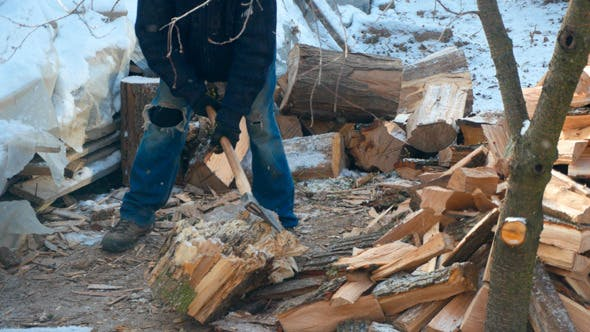 Thumbnail for Lumberjack Chopping Wood In The Winter