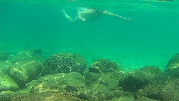 Cover Image for Snorkeling