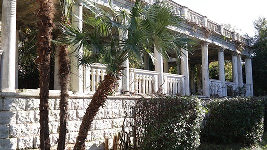 Thumbnail for Exterior of Old Abandoned Building With Palm Tree