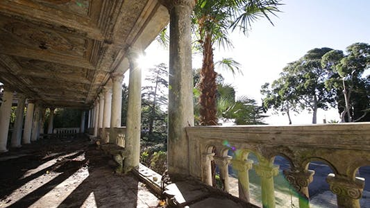 Thumbnail for Interior of Old Abandoned Building With Palm Tree