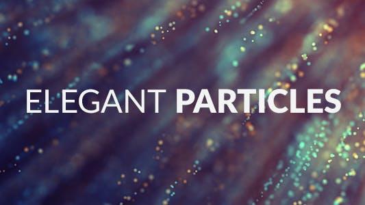 Elegant Particles