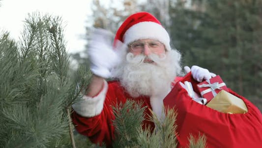 Thumbnail for Santa in forest