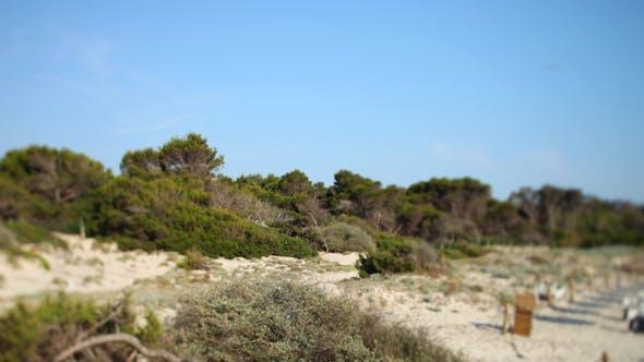 Thumbnail for Mallorca Beach 06