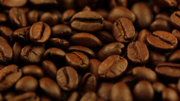 Thumbnail for Roasted Coffee Grain