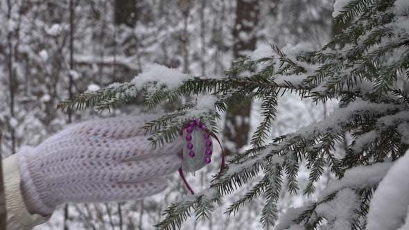 Thumbnail for Ball On Christmas Tree 1