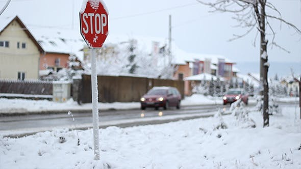 Thumbnail for Winter Traffic Sign
