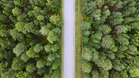 Thumbnail for Aerial: Drone Flight Over Green Forest and Straight Road