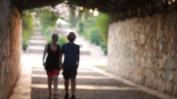 Thumbnail for Romantic Couple Walking Hand In Hand