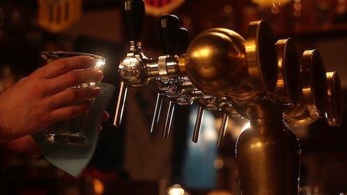 Bartender at The Bar