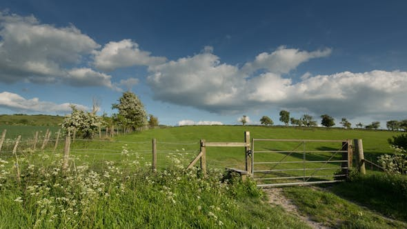 Thumbnail for England Countryside Rural Summer Field 9