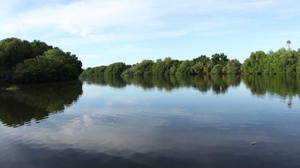 Thumbnail for Lagoon Natural Park Bird Reserve Mexico 7