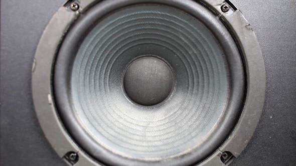 Thumbnail for Speaker Pump 07