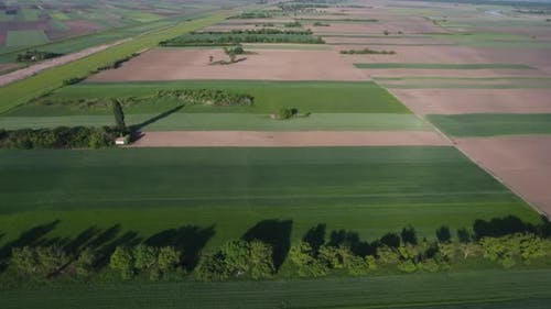 Farmland Fields