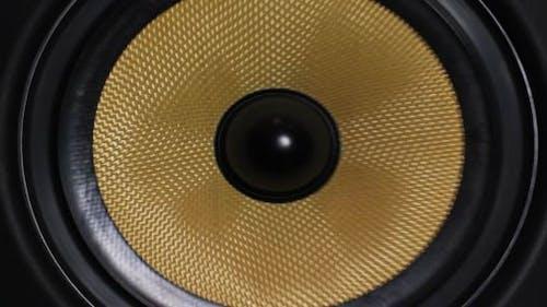 Bass Audio Speaker 5