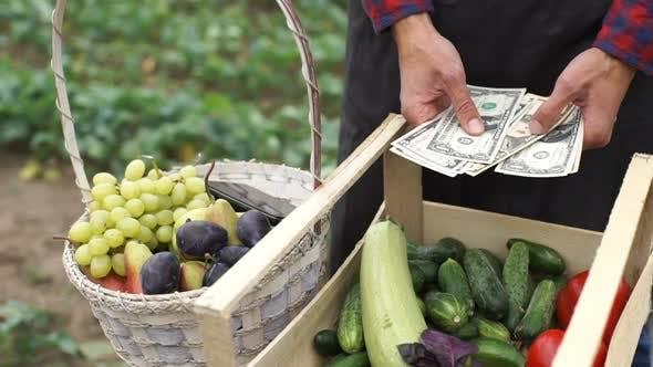 Thumbnail for The Farmer Considers the Earned Money