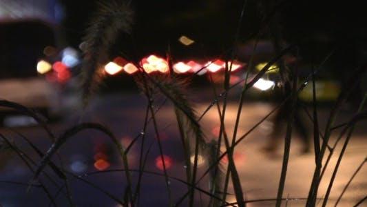 Thumbnail for Rainy Night Street - HD