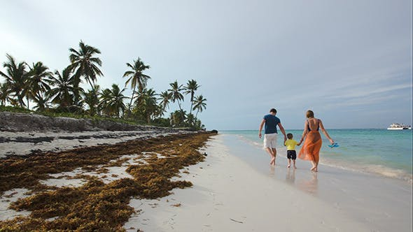 Thumbnail for Family Of Three Walking Along The Beach In Tropics