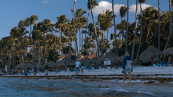 Thumbnail for People Walking Along The Beach On Tropical Resort