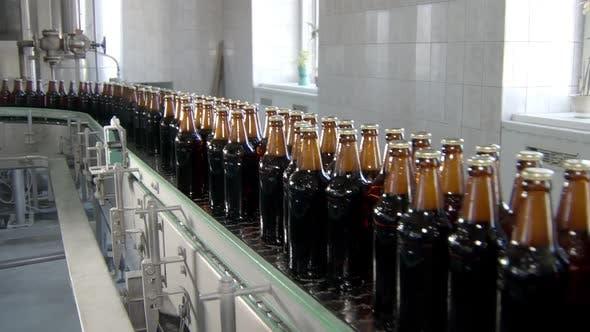 Thumbnail for Modern Equipment of Bottling Beer in Plant Workshop, Bottles with Lager Are Moving