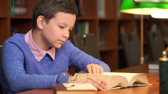 Thumbnail for Portrait of Schoolboy Doing Their Homework in Library or Room