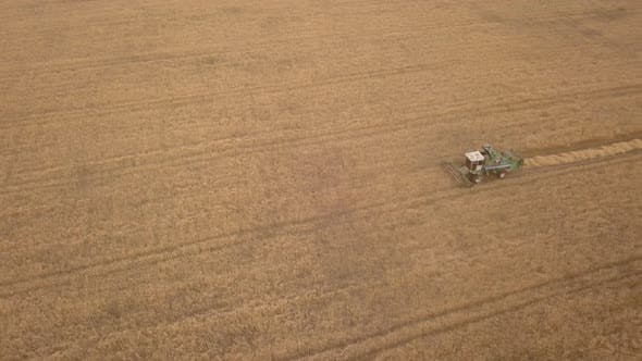 Cover Image for Aerial Drone Shot of a Combine Harvester Working in Autumn