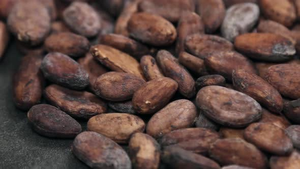 Thumbnail for Roasted Cocoa Beans Making Drinks Chocolate Desserts