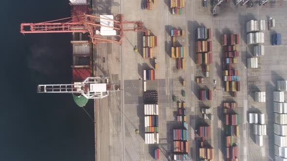 Thumbnail for Container Terminal