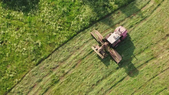 Selfpropelled Car Mower Goes Through the Meadow Haymaking in the Evening