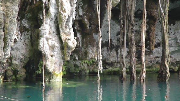 Thumbnail for Cenote Sinkhole Mexico Wonder Clear Water 4