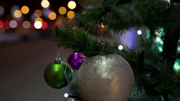 Thumbnail for Decorated Christmas Tree Outdoor In The City