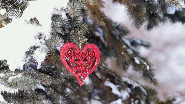 Thumbnail for Spruce Branch with Snow and Heart