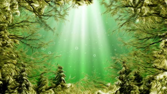 Thumbnail for Under Water Seaweed