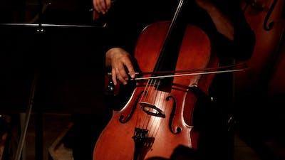 Violoncello In Orchestra