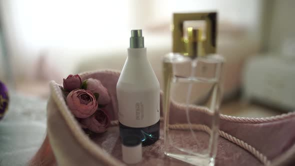 Thumbnail for Cosmetics