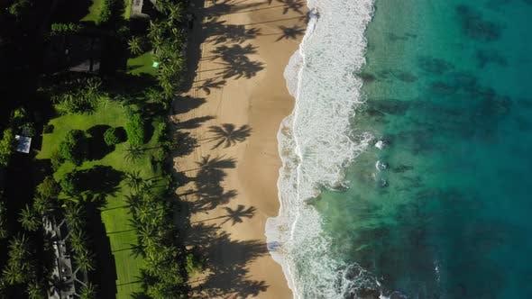 Thumbnail for Haena Beach. Hawaii. Tropical Sandy Beach Stripe Washed By Beautiful Oceanic Surf