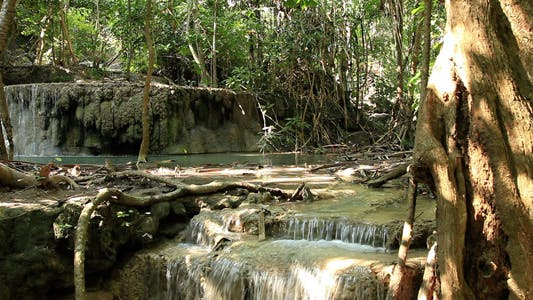 Thumbnail for Wild Waterfalls