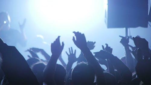 Konzert Crowd Wahnsinn