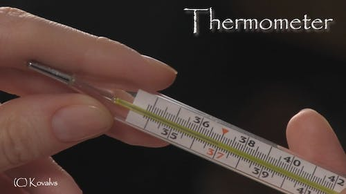 Hand With Thermometer