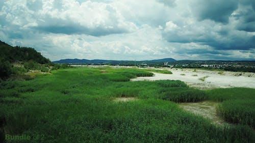 Green Landscape Scenery