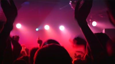 Action In Club Dance Floor