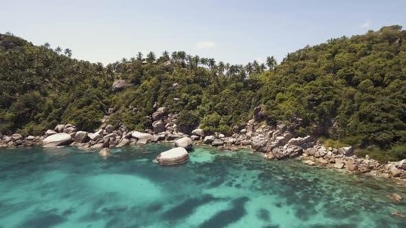 Thumbnail for Seashore Tropical Island