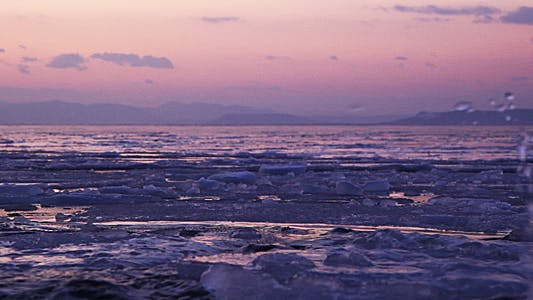 Cover Image for Evening Ice on the Sea