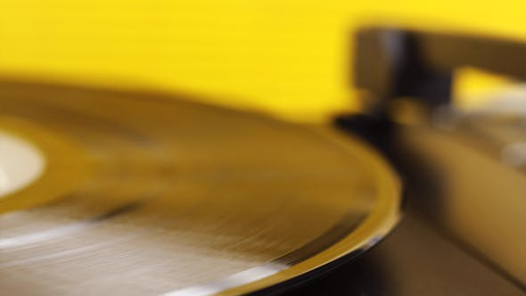 Gelb Vinyl 01