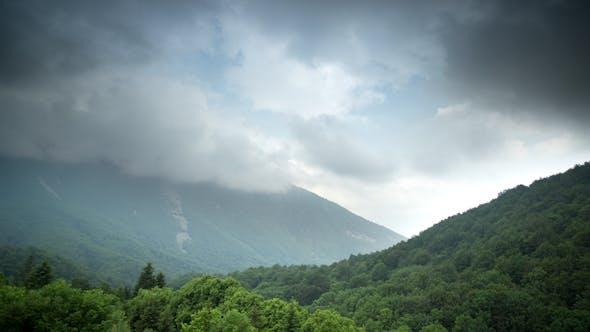 Thumbnail for Montseny Natural Parc Wildlife Barcelona Spain 1