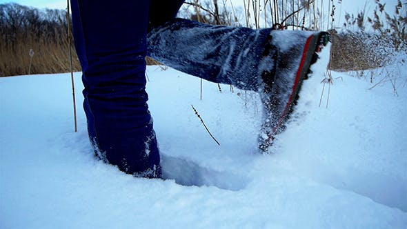 Thumbnail for Wading Through A Snowdrift