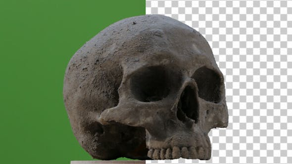 Spinning Skull Pre-Keyed
