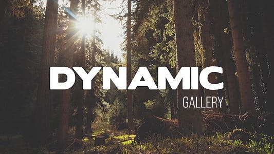 Thumbnail for Dynamic Gallery