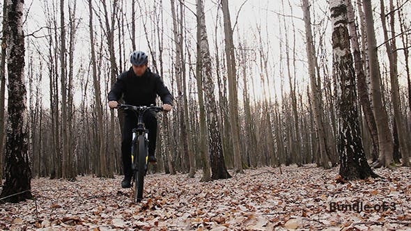 Thumbnail for Cyclist in the Woods